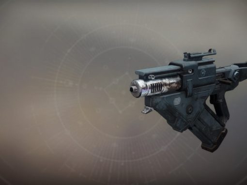 Skyburner's Oath Exotic Scout Rifle